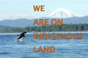 We are on indigenous land image of orca in sound with Mt. Bake backdrop