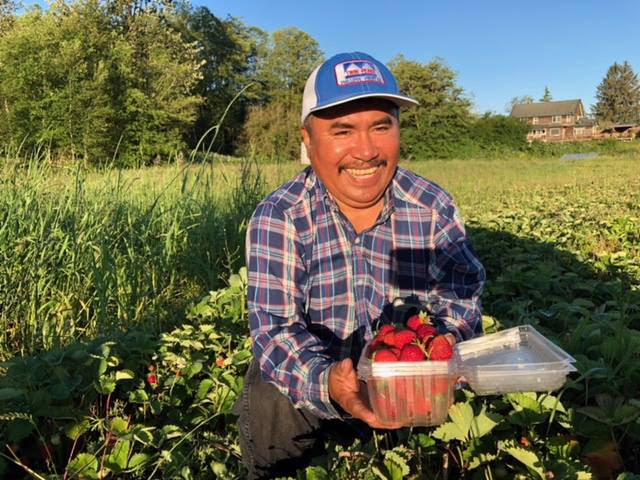 Migrant farmerworker smiling and working in his own field owned through the Co-op.